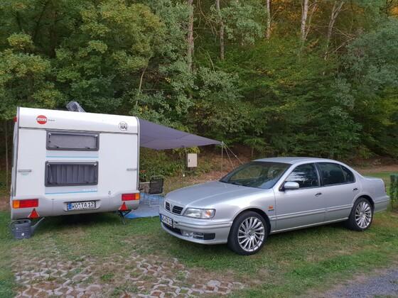 Campender Maxima