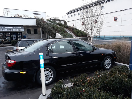 Gotcha's Nissan Maxima
